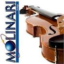 MOLINARI Violin 201-2 (HALF SIZE VIOLIN)